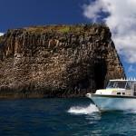 Castaway Norfolk Island - Sea Tours & Fishing